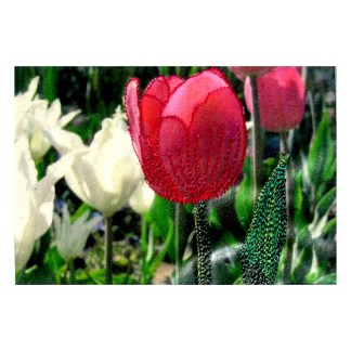 Machine embroidered photo of a red tulip by Tamara Russell - Karhina.com