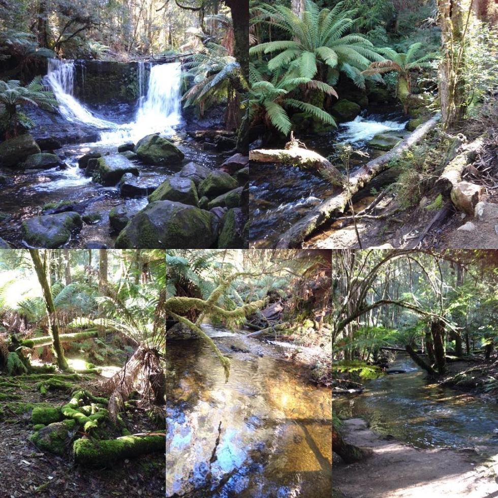 Russell Falls, Mt. Field National Park, Tasmania