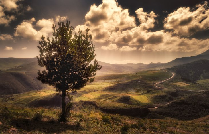 Image result for south africa photography