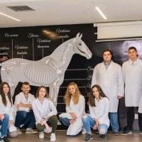 Zašto studirati veterinu u Sarajevu?