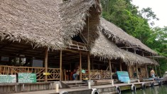 Stop at Aguas Calientes, for a dip. Rio Dulce, Guatemala -- Karina Noriega