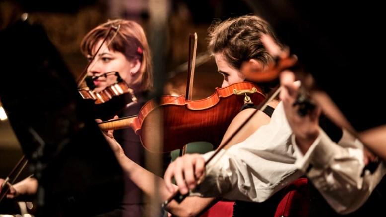 seorang violin profesional