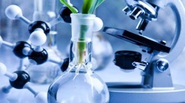 Cara Menjadi Bioteknologi