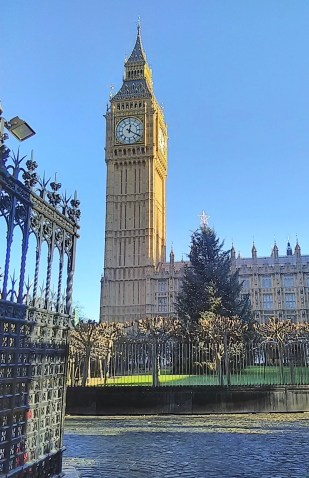 Big Ben and the Christmas tree in the courtyard