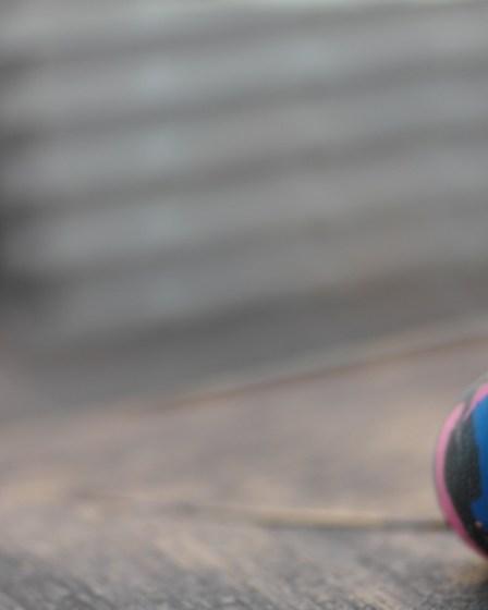 (c) Karl Baumann 2015: Der Gummiball, Straden im April, Samsung NX20