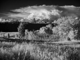rural_029