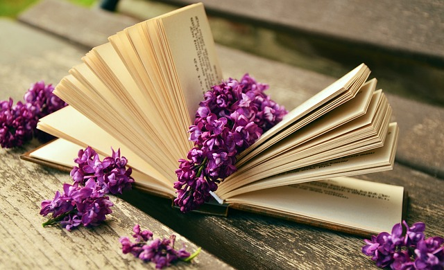 Romance novel and online book review sites.