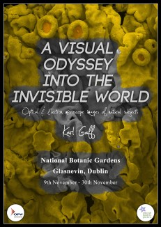 KGaff Botanics Exhibit 2014. Poster