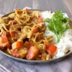 Vegan curry met kokosmelk en masala pasta (low FODMAP, glutenvrij)