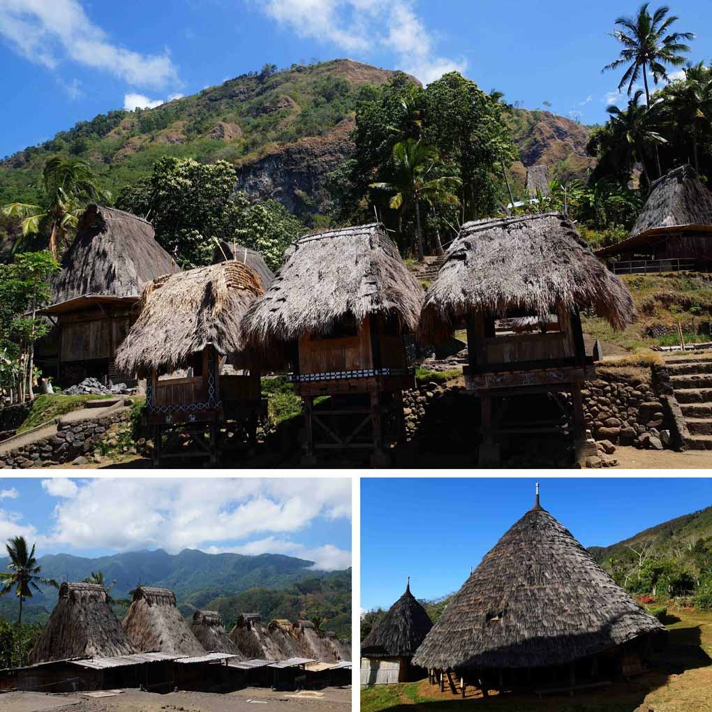 Flores-Indonesië