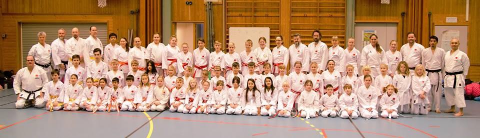 Gradering upp till 6 kyu för Karlstad Shotokan karate och Lima karateklubb från Sälen.
