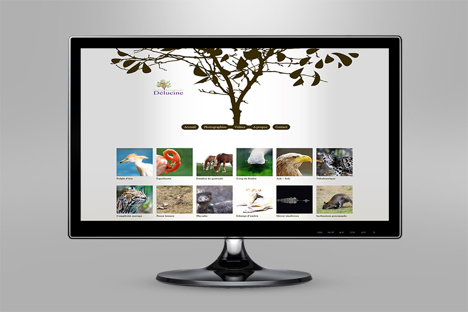 karlxena-site-internet-delucine-2010-2