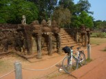 Bike appreciating the terrace of the elephants