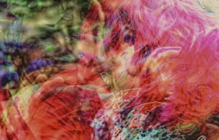 200160_2009-08-08_fognin_csd_or.jpg