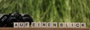 """Auf diesem Bild liegt ein Fernglas vor einem grünen Hintergrund. Die Scrabble-Buchstaben sind aufgestellt und bilden im Vordergrund den Schriftzug """"Auf einen Blick"""""""