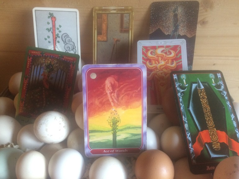 Ace of Wands and Eggs