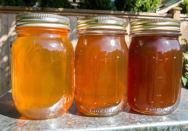 Multiple harvest honey