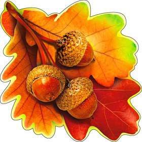Листья Дуба Картинки Осенние