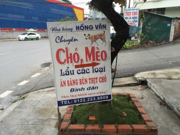 Cho Meo dog meat in Interesting Vietnamfacts | Vietnam Sign