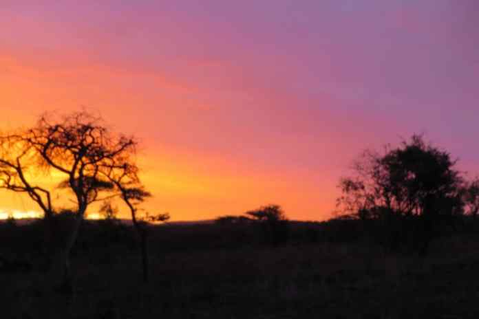 4 reasons to visit South Africa