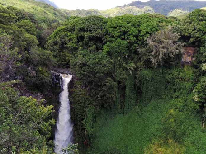 Maui day trips
