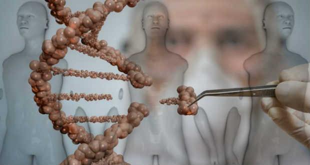 Laboratóriumban növesztett csontot ültettek emberbe Izraelben