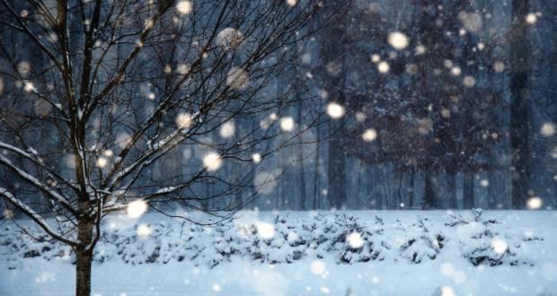 Dsida Jenő: December