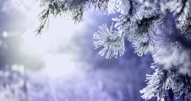 Kevés hóra és fagyra számíthatunk jövő héten Kárpátalján