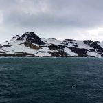 Az Antarktiszon megjelentek a közönséges szúnyogok