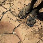 Válságba sodorja Afrikát az éghajlatváltozás