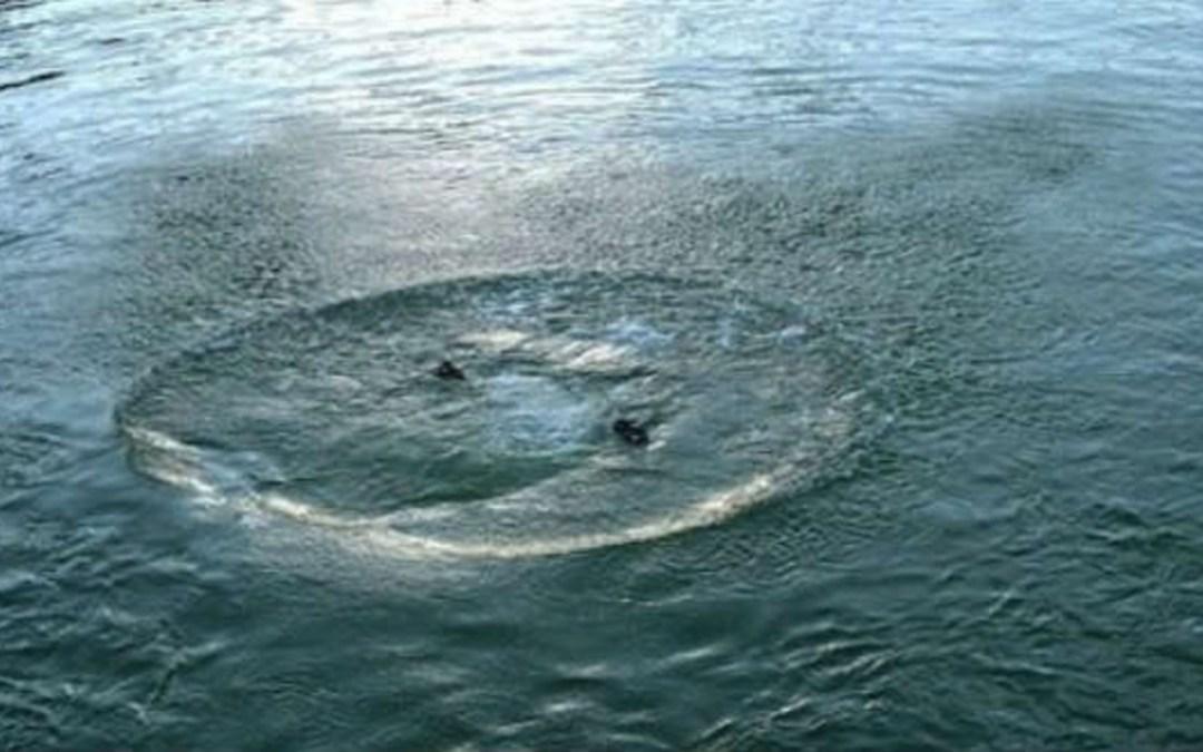 Vízbe fulladt egy nő a Huszti járásban