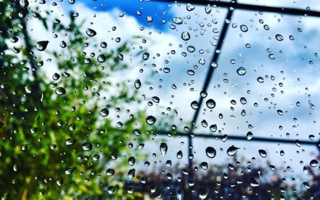 Szabó Magda: Eső