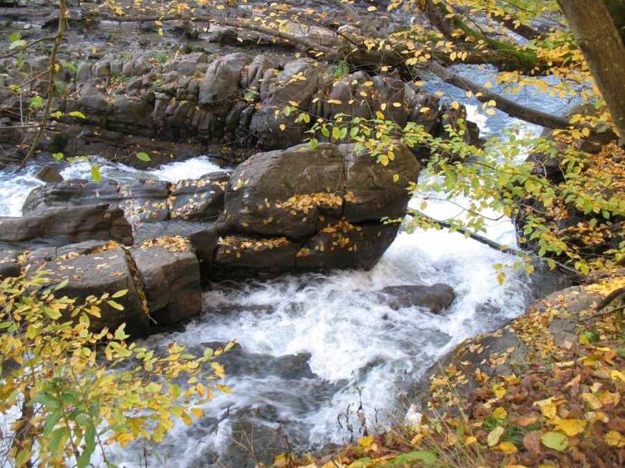 Детский отдых в Закарпатье Осенью