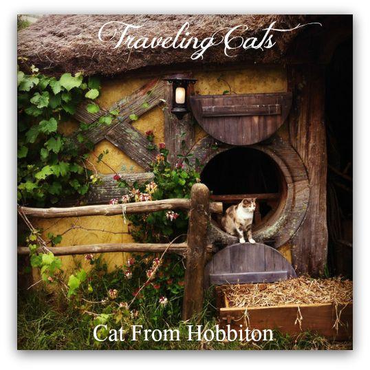 hobbiton-hobbit-house