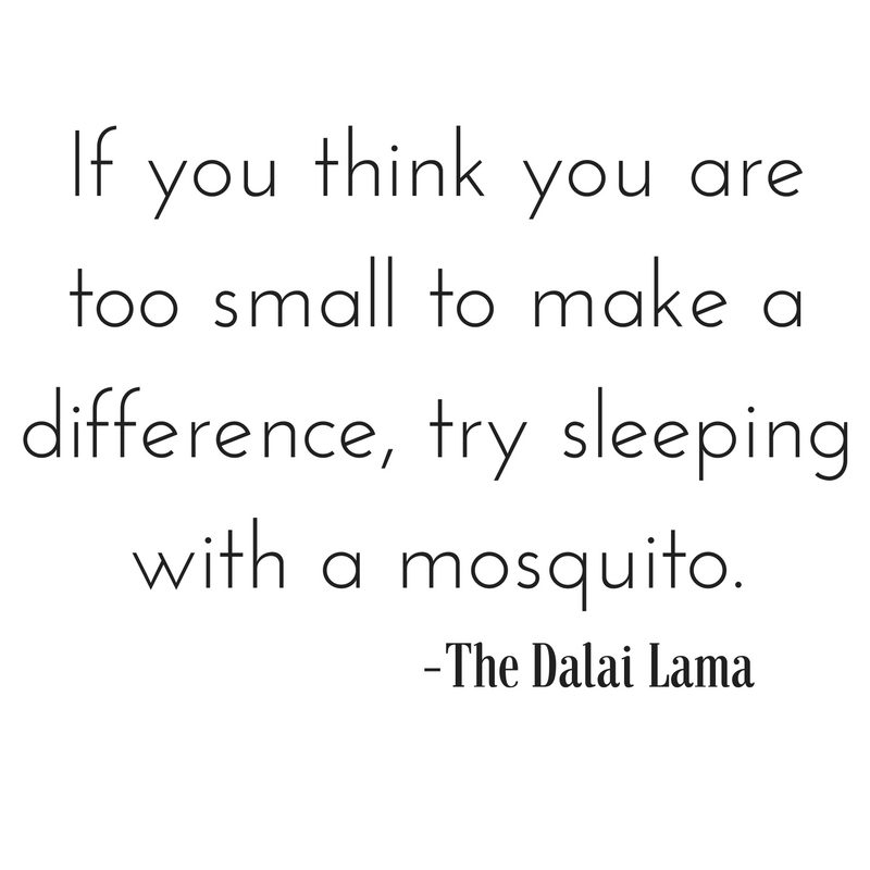 if-you-think-you-are-too-small-to-make-a-difference-try-sleeping-with-a-mosquito-the-dalai-lama