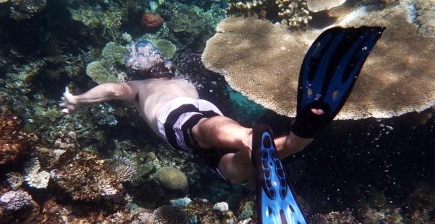 1 diving 625