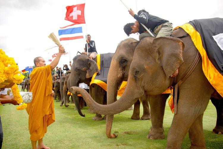 Monks blessing the elephants