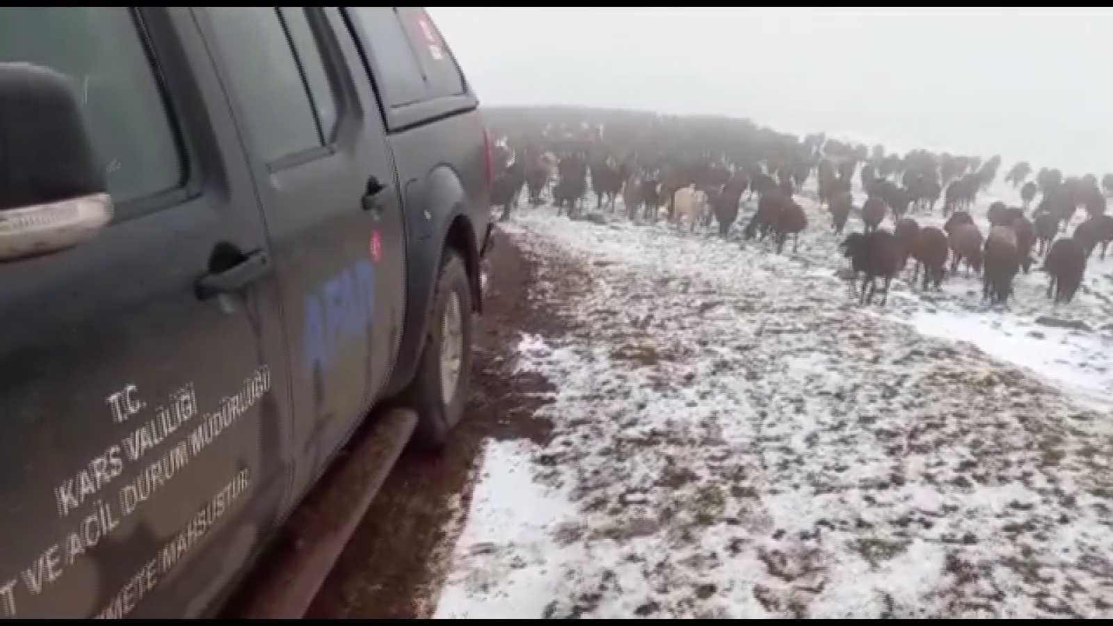 Allahuekber Dağları'nda kar ve tipide mahsur kalan iki çoban kurtarıldı