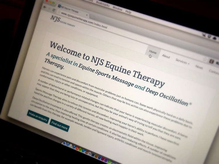 Photo of NJS Equine Therapy home page.