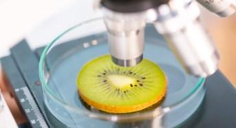 Διατροφική για την πρόληψη του καρκίνου