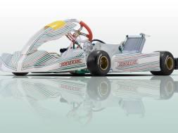 Tony Kart's Racer 401R_5c3a5fd15e8d6.jpeg