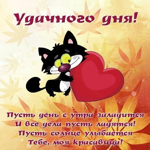 Добрый день картинки и фото Картинки Detkitoday