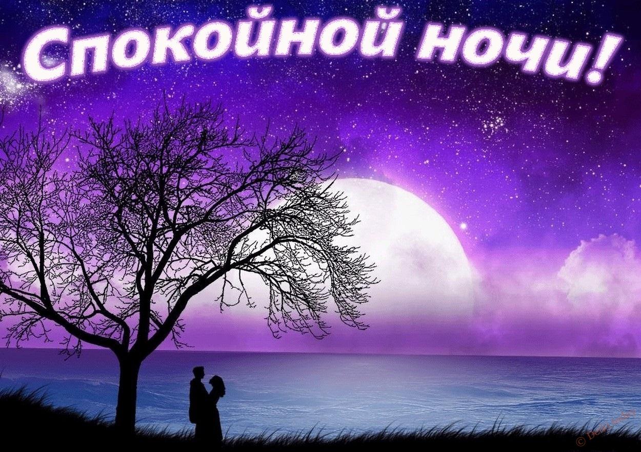 Открытка с пожеланием спокойной ночи любимой