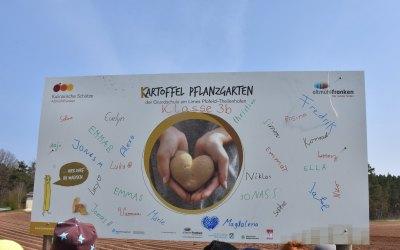 Auftakt zum Kartoffeljahr mit KINDER-Pflanzaktion in Gundelshalm am 11.04.19