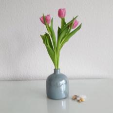Los primeros tulipanes
