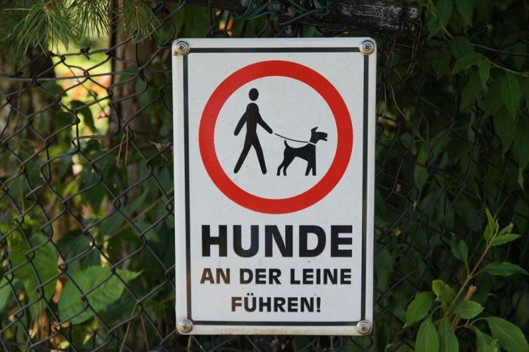 Perros en Alemania