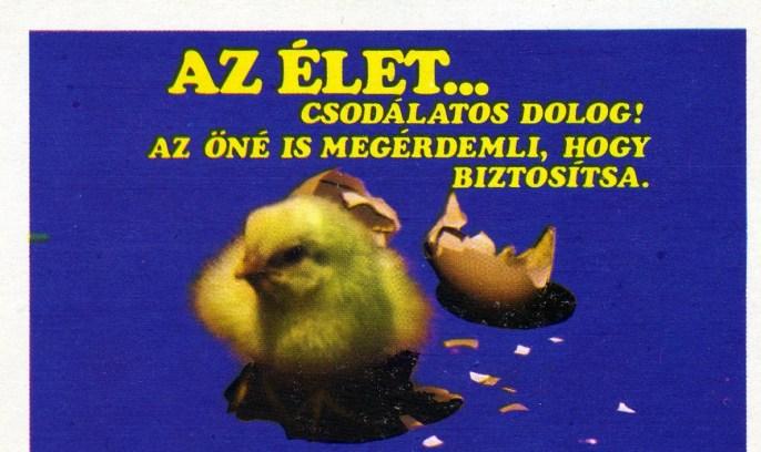 ÁB (1) - 1975