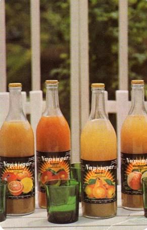 ÁGKER (Napsugár gyümölcsnektár) - 1983