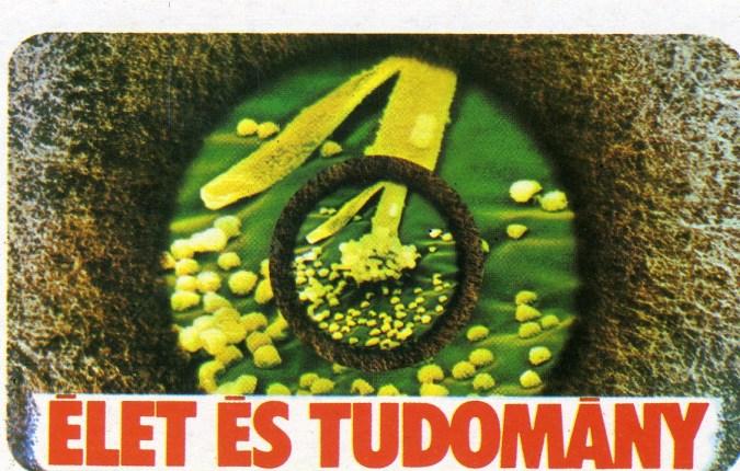 Élet és Tudomány (folyóirat) - 1978