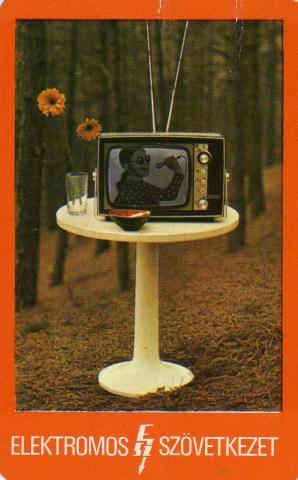 Elektromos Szövetkezet - 1977